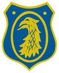 Bk örnen boxningsklubb logo